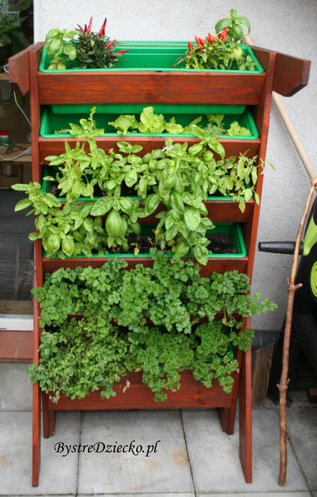 Zdrowa dieta dla dzieci z roślinami balkonowymi