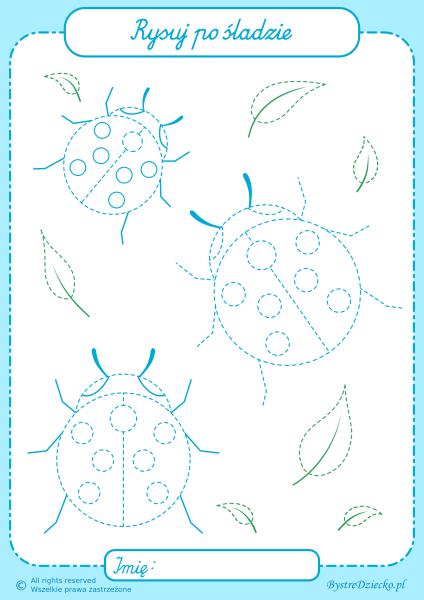 Biedronki, pomocne owady - rysowanie po śladzie to świetny sposób na ćwiczenia grafomotoryczne dla dzieci