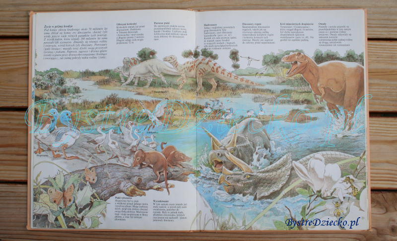 Książki dla dzieci o dinozaurach Jak żyły dinozaury Steve Parker