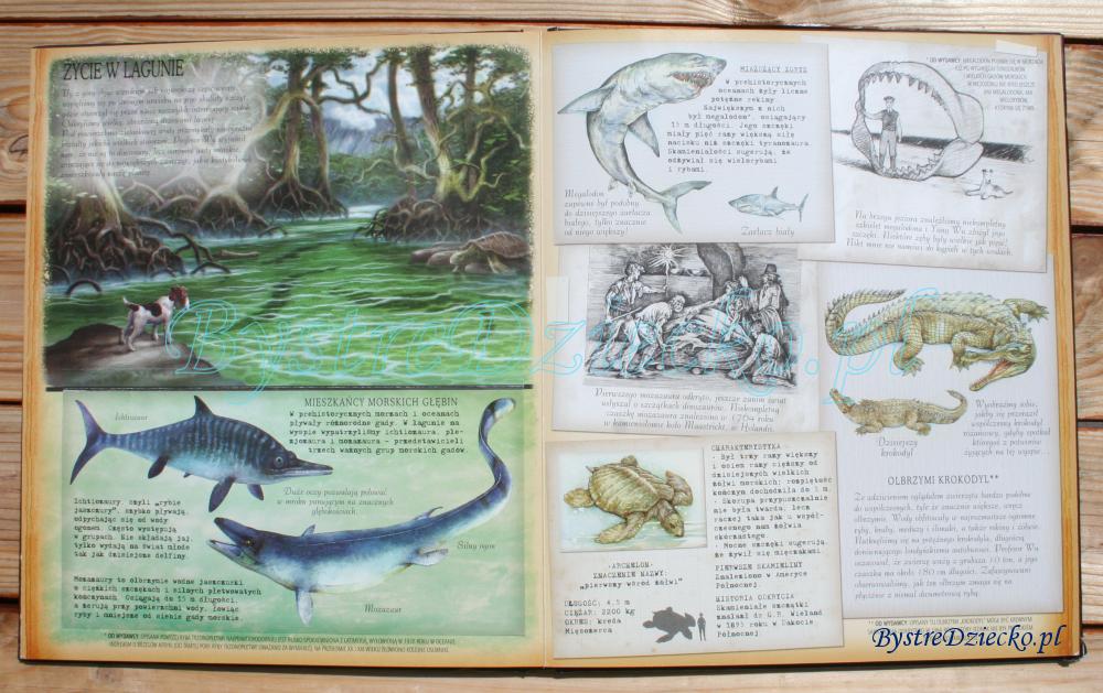 Książki dla dzieci o dinozaurach autorstwa - Dinozaurologia - w poszukiwaniu Zaginionego Lądu