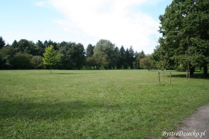 Tereny trawiaste Wrocław Grabiszyn-Grabiszynek, Park Grabiszyński
