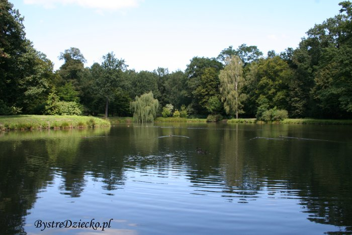 Ścieżkami wrocławskich parków