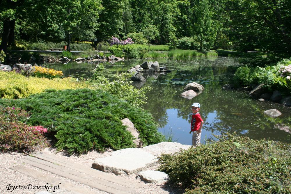 Wycieczka przyrodnicza do Ogrodu Japońskiego we Wrocławiu - tanie wycieczki po Polsce z dzieckiem