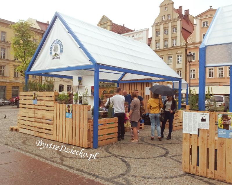 Upcycling jako plastyczne atrakcje dla dzieci - program 'Po stronie natury' we Wrocławiu - recykling tworzyw sztucznych