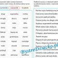 Części mowy w ćwiczeniach - rzeczownik, przymiotnik, czasownik, liczebnik - gramatyka dla dzieci