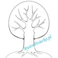 kolorowanki/przyroda/drzewo-cztery-pory-roku-szablon-01