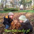 Zabawy ruchowe w parku jesienią