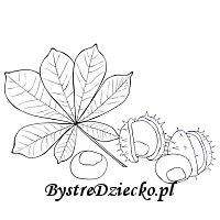Chestnuts - autumn coloring pages for kids