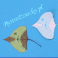 DIY Colored fish from dried autumn leaves of tree as part of the art for kids