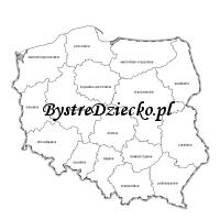 Mapa konturowa Polski z podziałem na województwa do wydrukowania