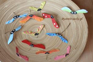 DIY Tęczowe owady z darów natury - owoce klonu - klon zwyczajny w ramach prac plastycznych dla dzieci
