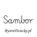 Karty pracy z imionami - nauka pisania imion dla dzieci - Sambor