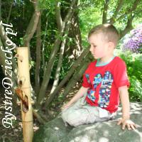Botaniczne podróże do Ogrodu Japońskiego - tanie wycieczki po Polsce z dzieckiem