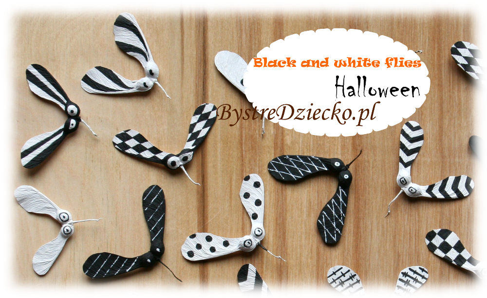 DIY Black and white bugs from nature materials - fall maple seeds as part of crafts for kids