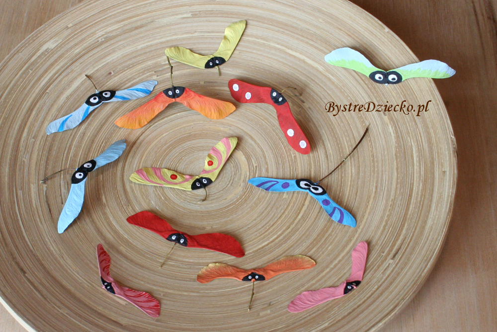 DIY rainbow bugs from nature materials - fall maple seeds as part of crafts for kids